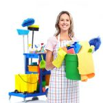 professional cleaning prices